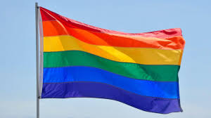 St Kitts Flag Buy Rainbow Flag U0026 Pride Flag 3x5 U0027 On Sale 5 95 Each