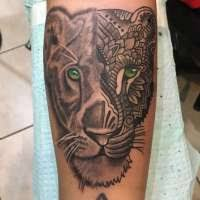 olio 16 lioness tattoo idea images that mention lioness