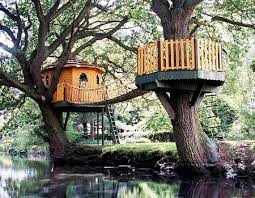 Cool Tree Houses 15 Best Tree Houses Images On Pinterest Architecture Treehouses