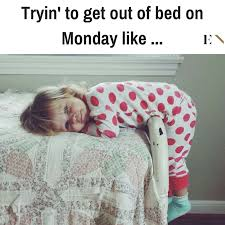 Monday Meme Images - this monday meme will help you laugh through this dreadful day