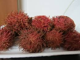 fruit similar to lychee fruit and food in harbin u2013 september 10 2013 olivia u0027s fall