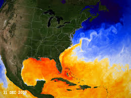 Current Temperature Map Svs Current Sea Surface Temperatures Rising In The Gulf Of Mexico
