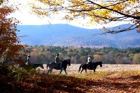 New Hampshire nature activities images On site activities farm by the river b and b with stables farm jpg