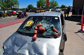 crash test dummy the chaffee county times home