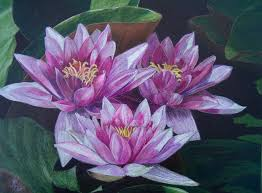 best 20 pencil sketches of flowers ideas on pinterest pretty