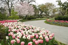 Dallas Arboretum And Botanical Garden Dallas Arboretum Ranked Second Best Garden In The World Nbc 5