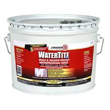 Flat Paint For Bathroom Zinsser 1 Gal Watertite Mold And Mildew Proof White Oil Based