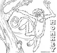 monkey coloring pages coloring pages to download and print