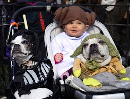 dog halloween costume parade packs in pups in new york city