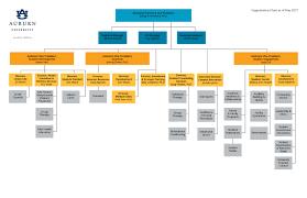 organizational charts assessment u0026 strategic planning auburn