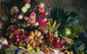 interesting things about thanksgiving 8 interesting harvest festival facts you might not know