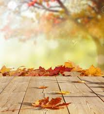 backgrounds for photography autumn background stock photo picture and royalty free image
