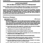 copy and paste resume template copy and paste resume template