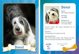 donut therapy trading card photogs custom