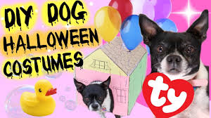 3 diy halloween costumes for your dog youtube