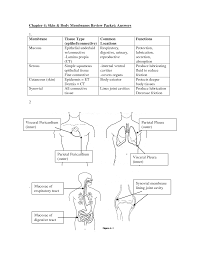 anatomy and physiology coloring workbook chapter 1 answers at best