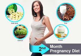 2nd month of pregnancy diet which foods to eat u0026 avoid