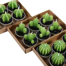 asian cactus ring holder images Amazing looking mini green cactus candles 6pcs jpg