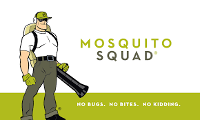 mosquito squad recognized as the best pest franchise