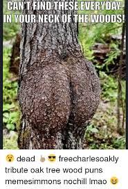 Tree Puns 25 Best Memes About Wood Puns Wood Puns Memes