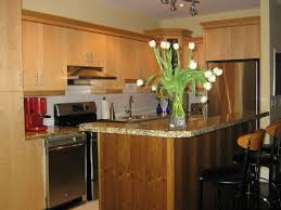 kitchen room 2017 kitchen color schemes with dark cabinets