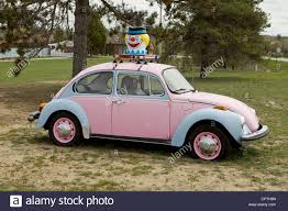 pink volkswagen beetle with eyelashes beetle head stock photos u0026 beetle head stock images alamy