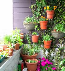 beautiful garden for the first impression of your home