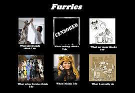 What I Think I Do Meme - what i think i do meme furries by d jett on deviantart
