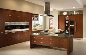 Kitchen Oven Cabinets by Decorating Charming Kitchen Storage Ideas With Elegant Medallion