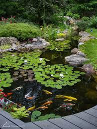 Aquascape Inc Amazon Com Aquascape 94006 Kink Free Pipe For Pond Waterfall
