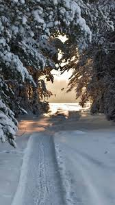 Winter Lane Light Flurries by 52 Best Winter Images On Pinterest Winter Snow Beautiful Places