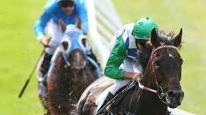 lexus in melbourne signoff u0027s melbourne cup stocks rise after lexus barrier draw the