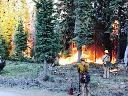 Wildfire Map In Oregon 2017 by Oregon U0027s Wildfires What You Should Know Portland Or Patch