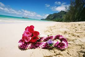 hawaiian leis fast facts about the hawaiian condos
