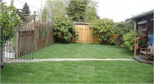 Things In A Backyard 10 Things In Your Yard You Can Get Rid Of Right Now Wealth