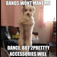 Dancing Dog Meme - pole dancing dog memes quickmeme