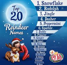 on the shelf reindeer 52 best meet the pets images on pets shelf