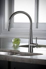 biscuit kitchen faucet lovely biscuit kitchen faucets delivering warm tone rabelapp best