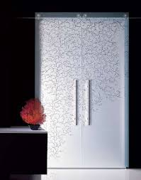 Sliding Kitchen Doors Interior Great For The Pantry Coral Etched Glass Sliding Doors Sliding