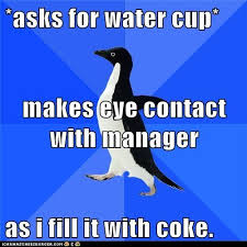 Awkward Memes - meme animals socially awkward penguin oh is this the coke