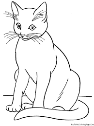 100 jungle animal coloring pages free printable kitten for