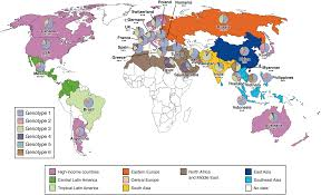 impact of new hepatitis c treatments in different regions of the