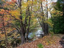 fall foliage drive hampshire u2013 serene england