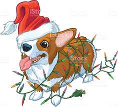 corgi dog with santa hat and christmas lights illustration stock