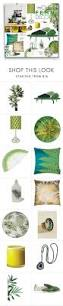 Fern Decor by Modern Fern Decor