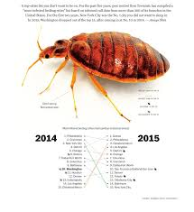 Bed Bugs New York City Where The Bed Bugs Bite The Most Infested Cities In 2015 The