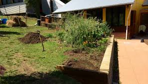 our permaculture life morag u0027s simple u0026 successful no dig garden