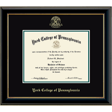 Diploma In Interior Design by Church Hill Classics Embossed Edition In Onyx Gold Diploma Frame
