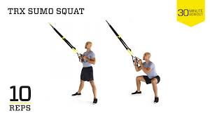 the beginner u0027s guide to trx suspension training