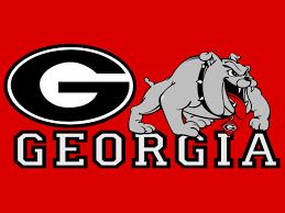 georgia bulldog georgia bulldogs cakes pinterest georgia
